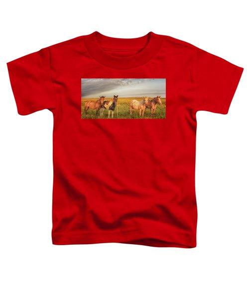 Horses At Kalae Toddler T-Shirt