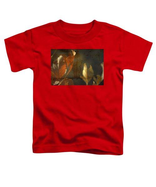 Low Months  Toddler T-Shirt
