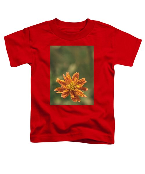 Manifesting Sundot..... Toddler T-Shirt