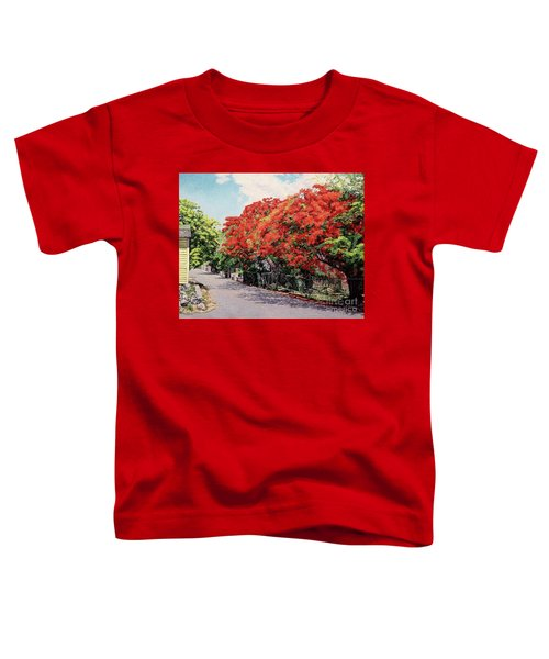 Meeting And Nassau Street Toddler T-Shirt