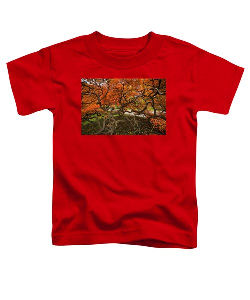 Mount Auburn Cemetery Beautiful Japanese Maple Tree Orange Autumn Colors Branches Toddler T-Shirt