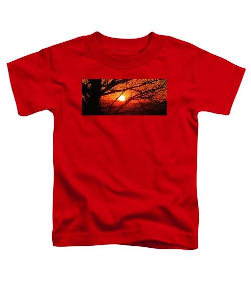 Naked Tree At Sunset, Smith Mountain Lake, Va. Toddler T-Shirt