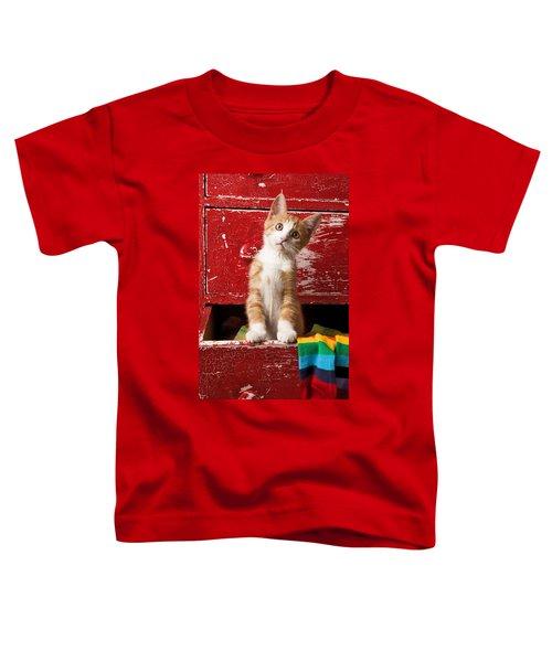 Orange Tabby Kitten In Red Drawer  Toddler T-Shirt