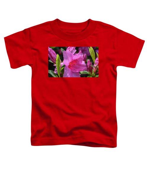 Pink Azalea Toddler T-Shirt