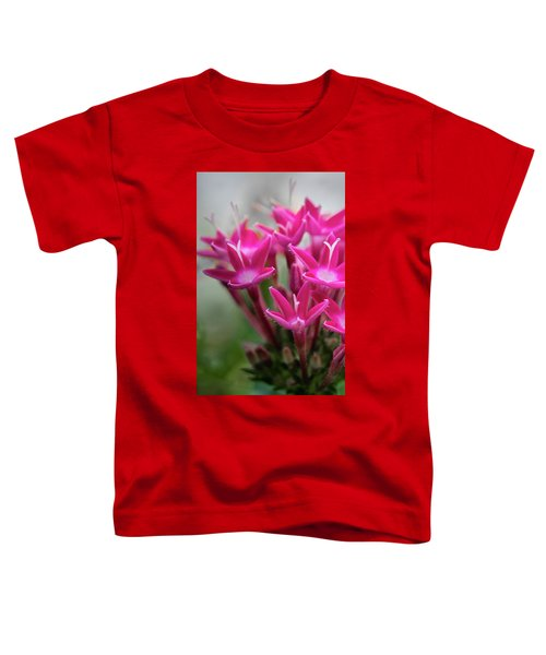 Pink Blossoms Toddler T-Shirt