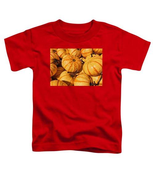Pumpkin Harvest Toddler T-Shirt
