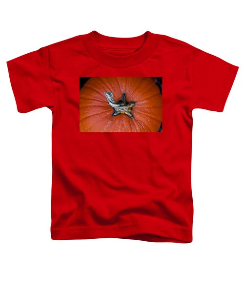 Pumpkin Stalk Toddler T-Shirt