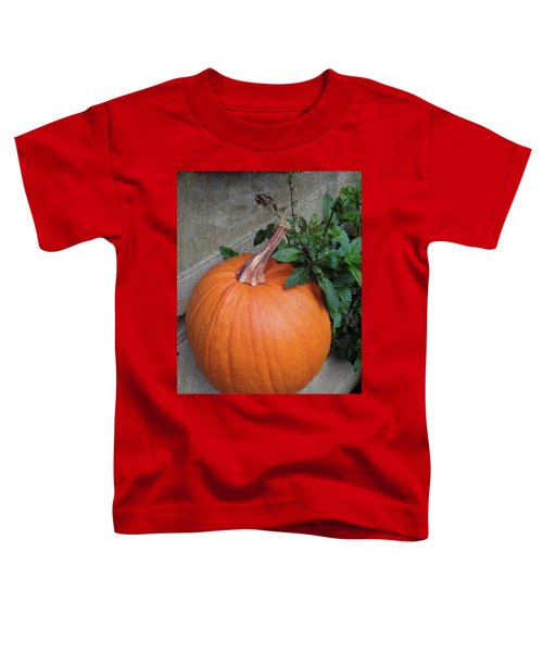 Pumpkin Toddler T-Shirt