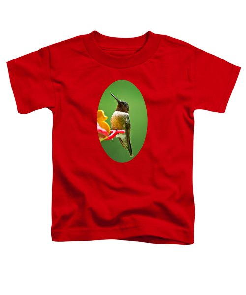 Rainy Day Hummingbird Toddler T-Shirt by Christina Rollo