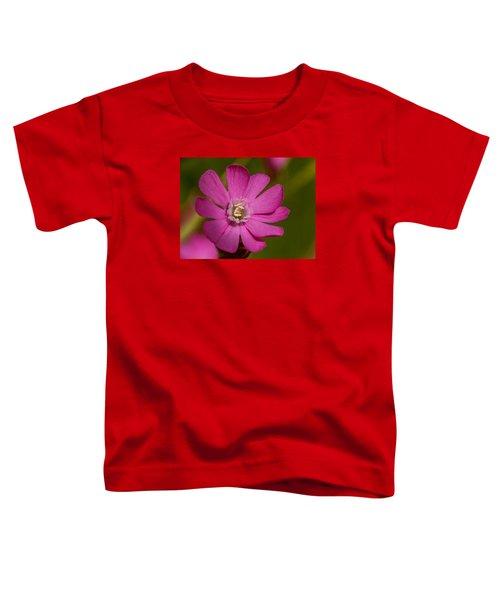 Red Campion Toddler T-Shirt