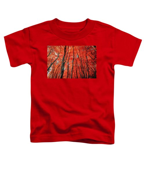 Red Forest Of Sunlight Toddler T-Shirt