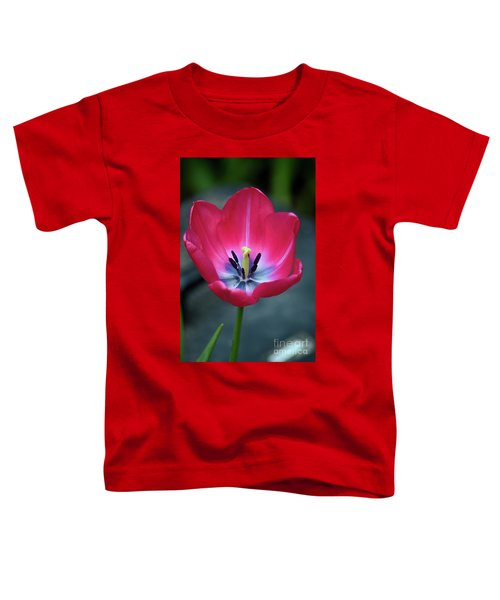 Red Tulip Blossom With Stamen And Petals And Pistil Toddler T-Shirt