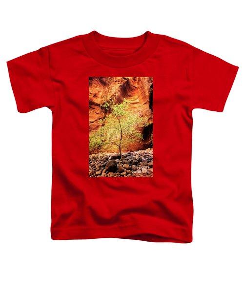 Rock Tree Toddler T-Shirt