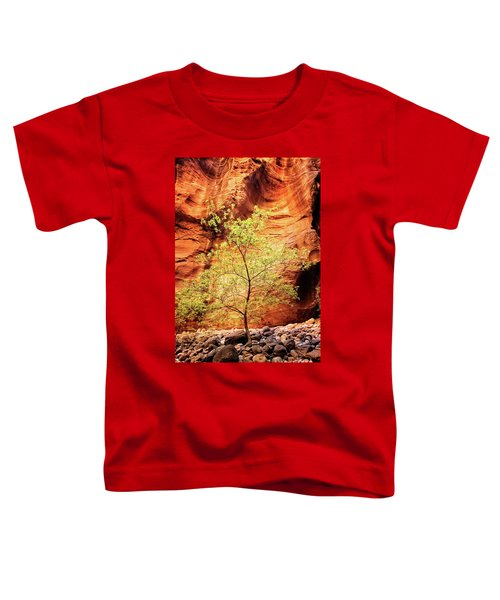 Rock Tree Toddler T-Shirt