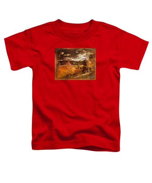 Rocky Mountain Gold 2015 Toddler T-Shirt