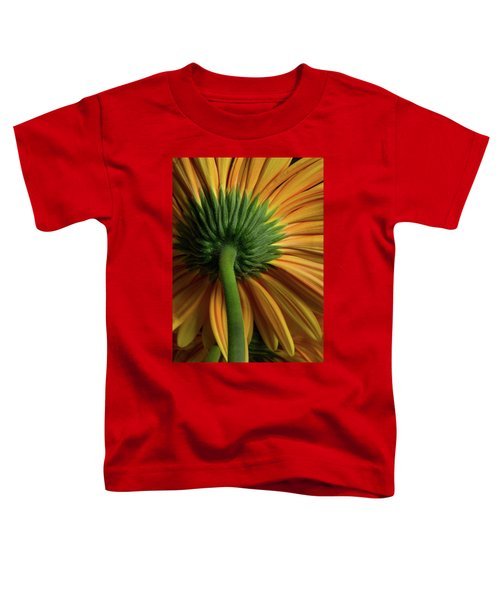 Shy Daisies Toddler T-Shirt