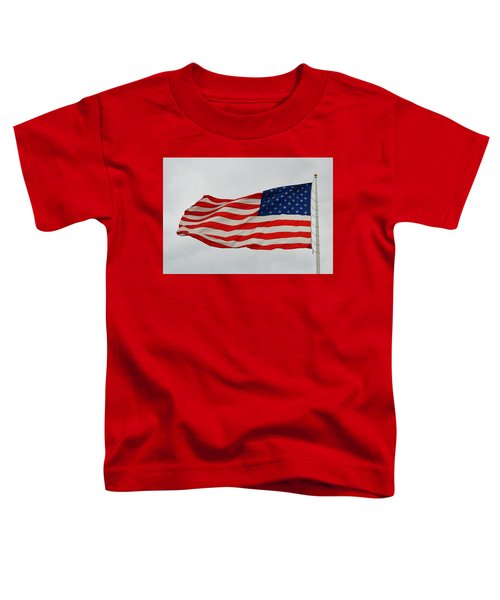 Sign Of Freedom Toddler T-Shirt