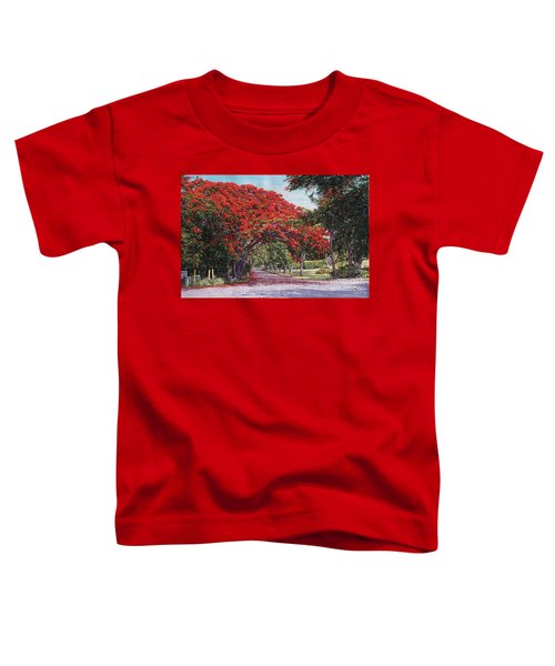 Skyline Drive Toddler T-Shirt