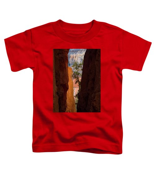 Sliver Of Bryce Toddler T-Shirt