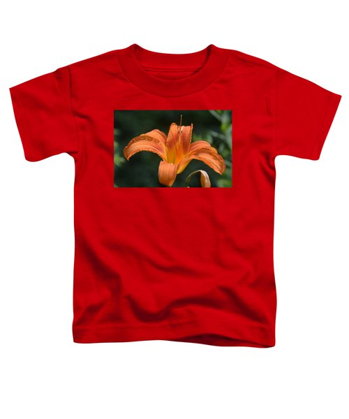 Summer Bloom-3 Toddler T-Shirt