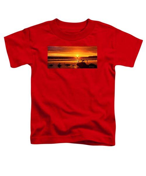 Sunset Surprise Pano Toddler T-Shirt
