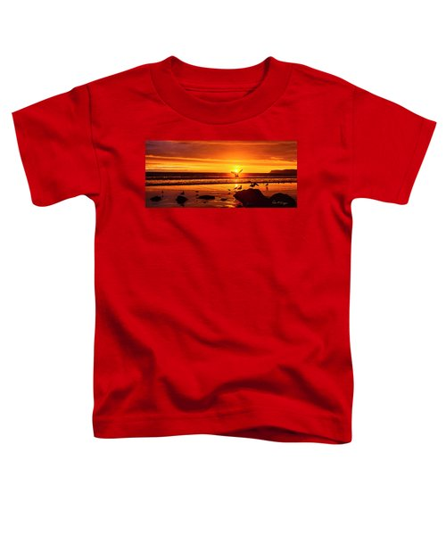 Sunset Surprise Pano Toddler T-Shirt
