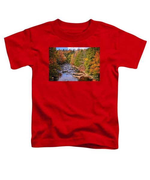 The Blackwater River In Autumn Color Toddler T-Shirt