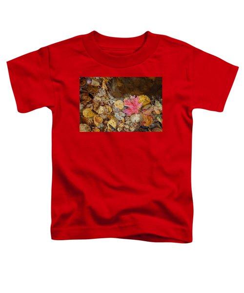 The Last Leaf Toddler T-Shirt