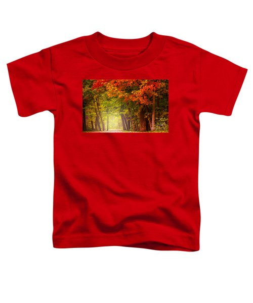 The Secret Place Toddler T-Shirt