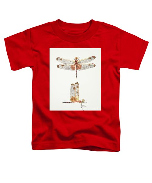 Top And Side Views Of A Male Calico Pennant Dragonfly Toddler T-Shirt