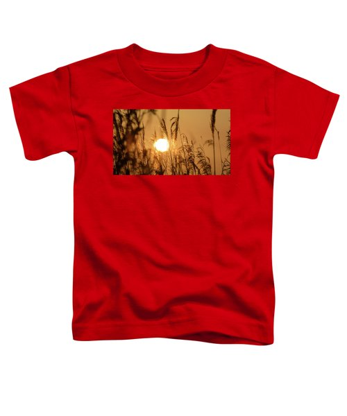 View Of Sun Setting Behind Long Grass B Toddler T-Shirt