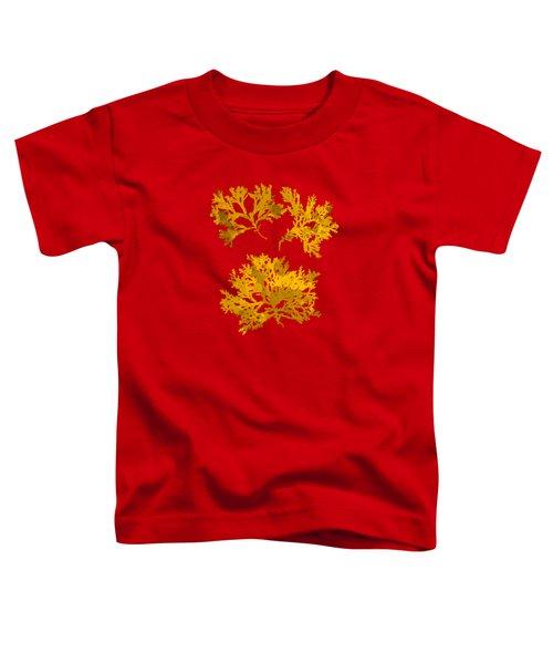Yellow Gold Seaweed Art Delesseria Alata Toddler T-Shirt