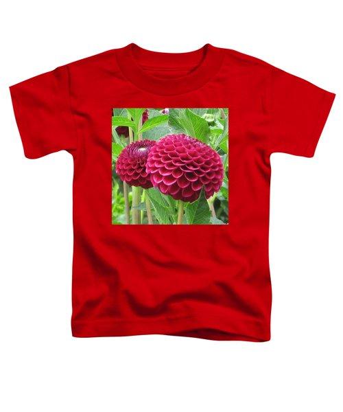 Zinnia Duet Toddler T-Shirt
