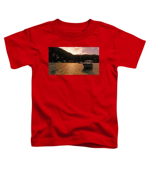 Abstractions Of Coral Bay Toddler T-Shirt