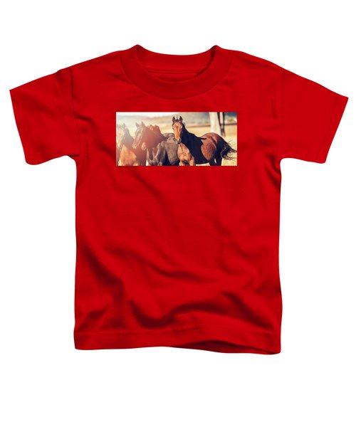 Australian Horses In The Paddock Toddler T-Shirt