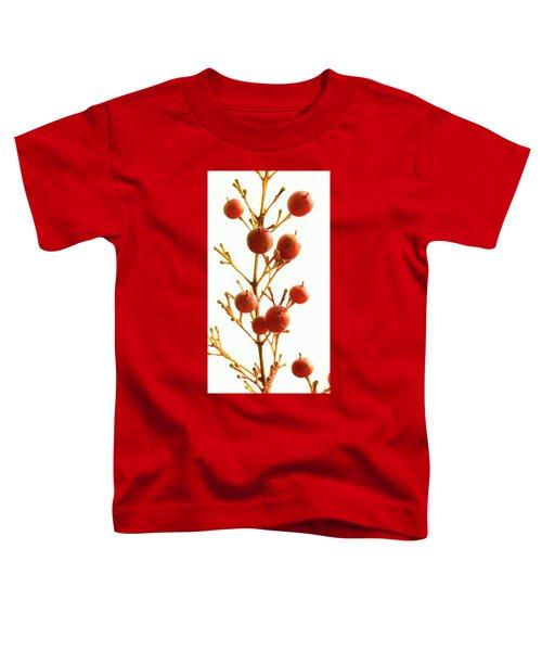 Brazilian Pepper 0482 Toddler T-Shirt