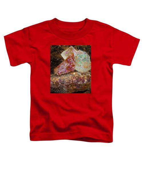 Desert Gems Toddler T-Shirt