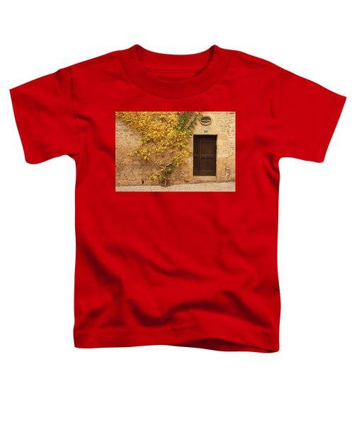 Doorway, Sarlat, France Toddler T-Shirt