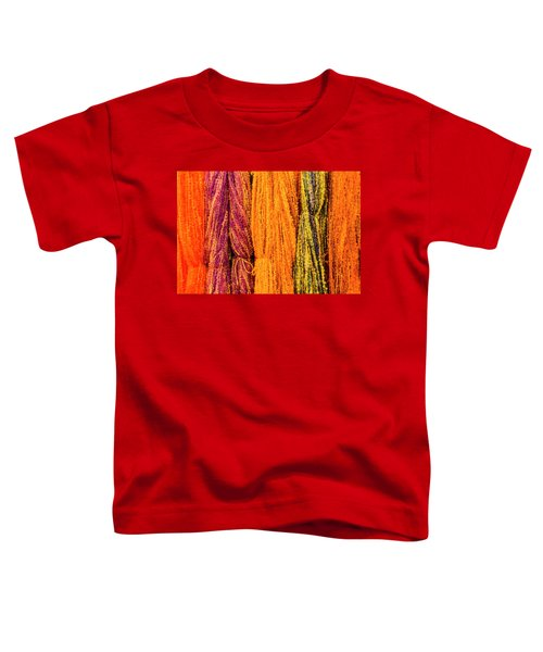 Fall Fibers 2 Toddler T-Shirt