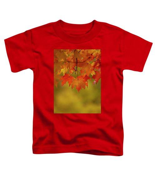 Fall Leaves Toddler T-Shirt