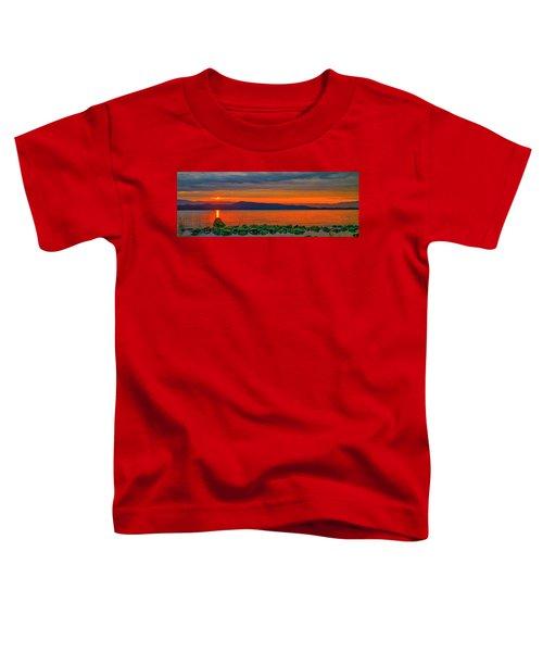 Fire Rock Toddler T-Shirt
