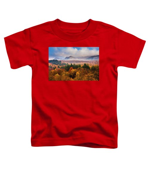Land Of Illusion Toddler T-Shirt