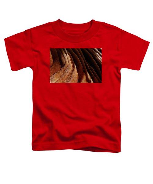 Natural Canyons Toddler T-Shirt