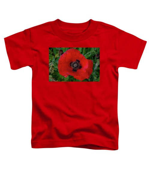 Red Poppy Toddler T-Shirt