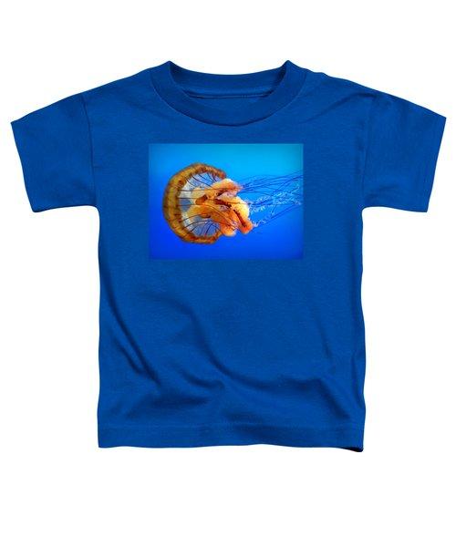 Amber Seduction Toddler T-Shirt