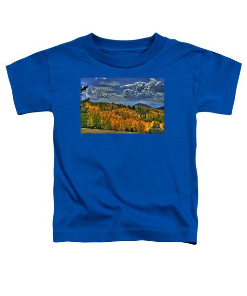 Autumn In Colorado Toddler T-Shirt
