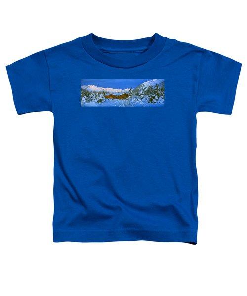 Cabin Mount Alyeska, Alaska, Usa Toddler T-Shirt
