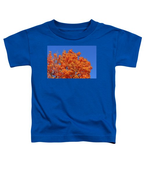 Fall Foliage Colors 19 Toddler T-Shirt