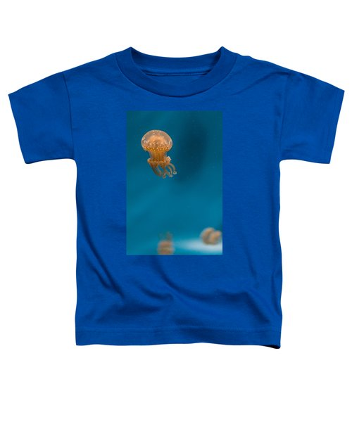 Hovering Spotted Jelly 2 Toddler T-Shirt
