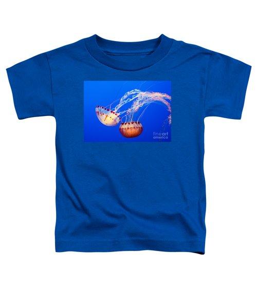Jelly Dance - Large Jellyfish Atlantic Sea Nettle Chrysaora Quinquecirrha. Toddler T-Shirt